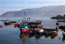 Fishing boats in port , Iquique , Region I , Chile
