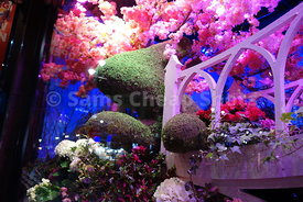 Macy's Flower Show Herald Square in NYC 2018