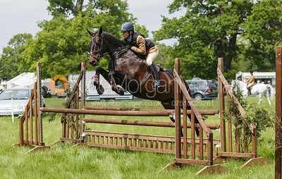 Class 7 - BSPS RIHS Open Intermediate Working Hunter photos