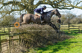 Phoebe Buckley jumping a hedge near Mr Wilson's covert