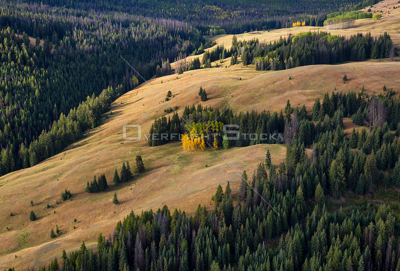 Fall Emerging in Ranch Land South of Keremeos BC Canada