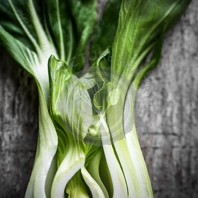 Moody Green Raw Chinese bok choy ingredent on Distressed rustic grey wood surface