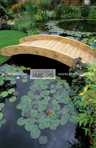 la phototh que les plus beaux jardins pont de jardin en bois sur un bassin avec nymphaea. Black Bedroom Furniture Sets. Home Design Ideas