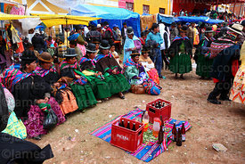 Aymara women sitting with communal supply of beer and coca leaves at festival in Caquiaviri, Bolivia