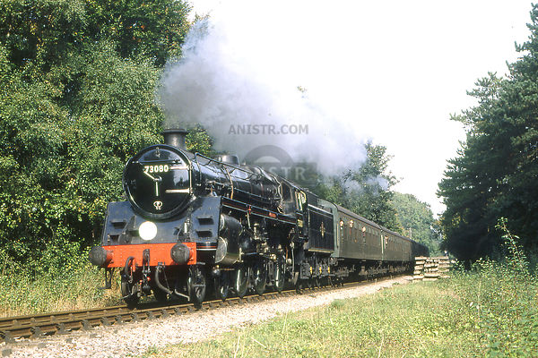 THE WATERCRESS LINE 1990-1999 photos