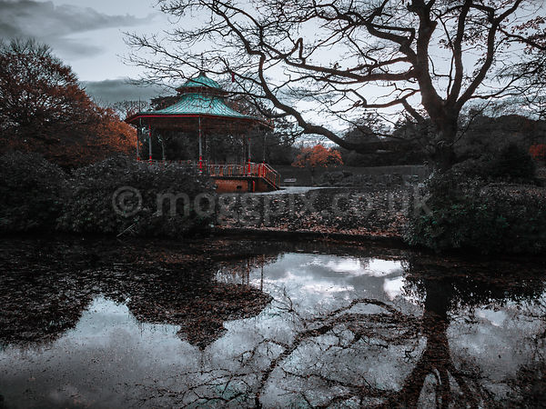 A Splash of Bandstand Colour
