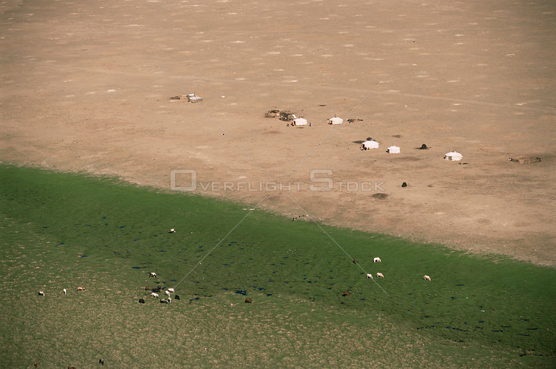 Aerial view of Gers, felt tents of nomads, and grazing livestock, Gobi desert, Mongolia. 2001