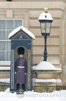 Queens Guard, Buckingham Palace