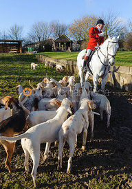 Huntsman Andrew Osborne MFH and hounds