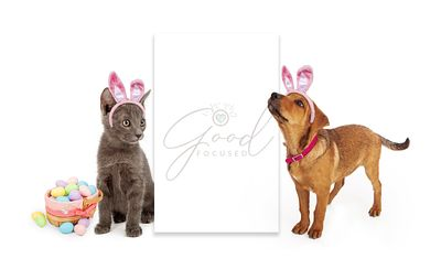 Easter Kitten and Puppy Blank Sign