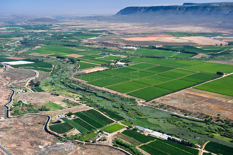 Aerial photograph of the Olifants River and the intensive agriculture along its course, a threat to the endemic fish species found here.
