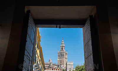 GIRALDA FRAMED IN ALCAZAR DOORWAY