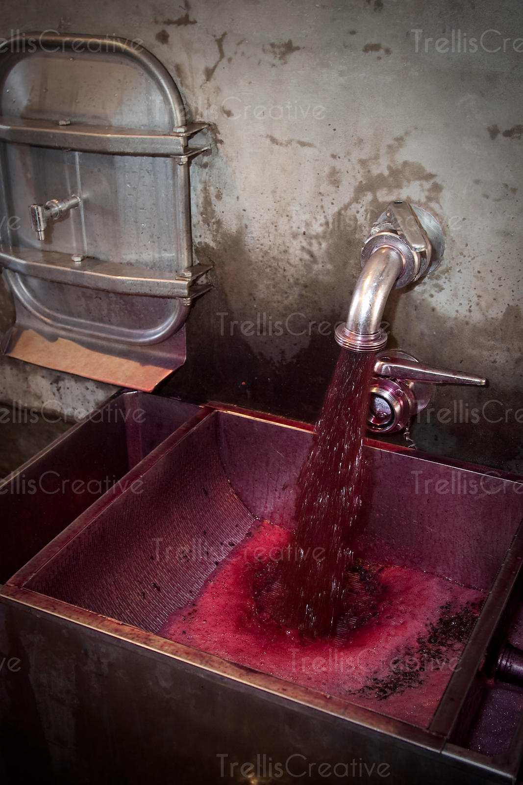 Red wine flows from a concrete fermentation tank