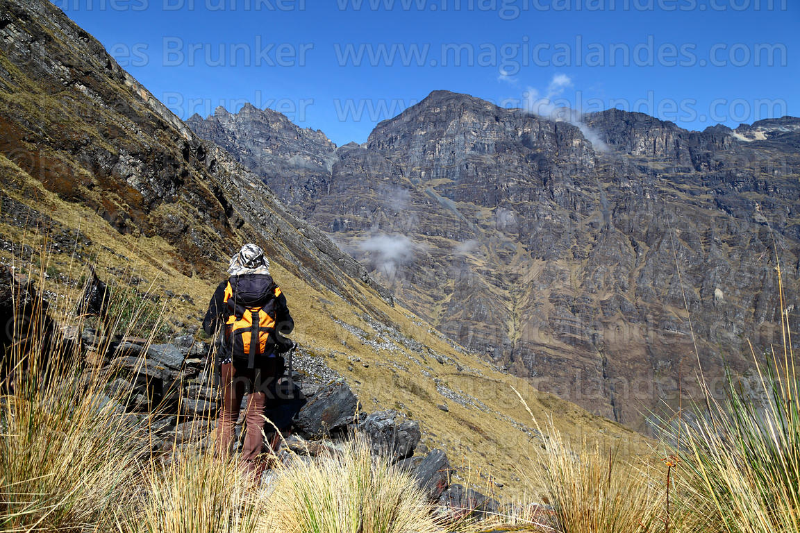 Hiker in the Choquetanga Valley above Pongo, Cotapata National Park, Bolivia