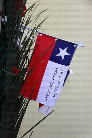 Flags to show support for miners trapped inside the San José mine by a tunnel collapse on 5th August 2010 , San Vicente church , Caldera , Region III , Chile