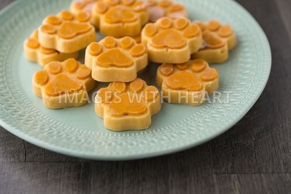 plate of frozen pumpkin dog treats