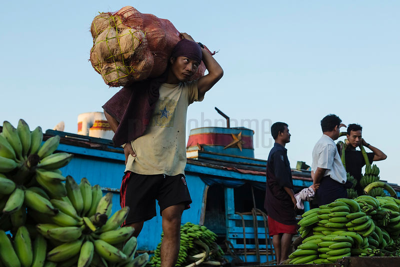 Wharfside Worker Carrying Coconuts