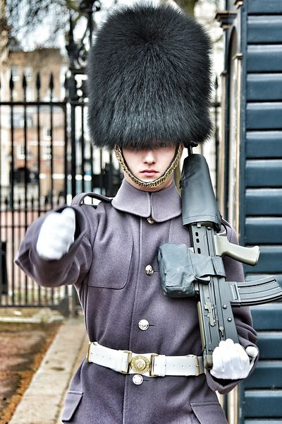 Royal Guard - London