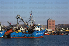 Trawler in fishing port, Arica, Region XV, Chile