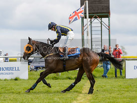 BEGGAR'S VELVET (Amy Cox) - Novice Riders Championship Final - The Melton Hunt Club Point-to-Point 2017
