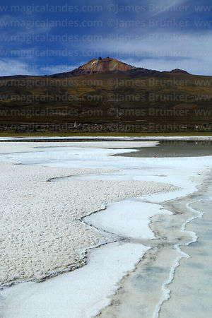 Salt formations on edge of saline pool and Tunupa volcano, Salar de Uyuni, Bolivia