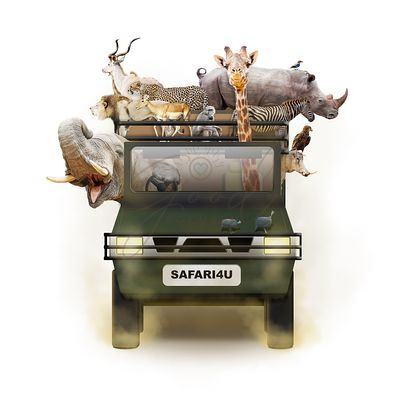 African Animals in Safari Tour Vehicle