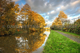 Autumn On The Chester Canal