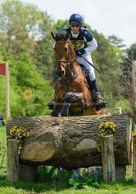 Dag Albert and MITRAS EMINEM - Rockingham Castle International Horse Trials 2016
