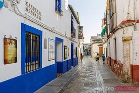 Street in the historical centre, Cordoba, Andalusia, Spain