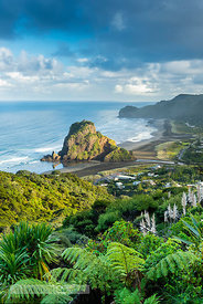 Lion Rock, Piha, North Island, New Zealand