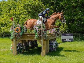 Louise Harwood and BRECHFA MEDROD, Fairfax & Favor Rockingham Horse Trials 2018