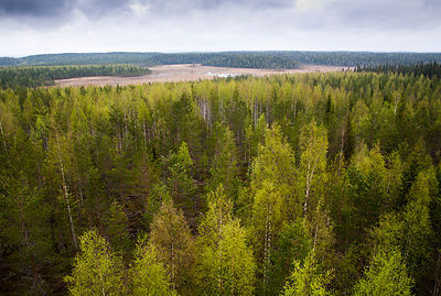 Nature Reserves in Finland photos