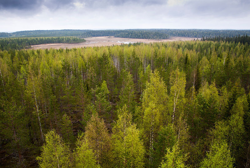 Elimyssalo, Kuhmo photos