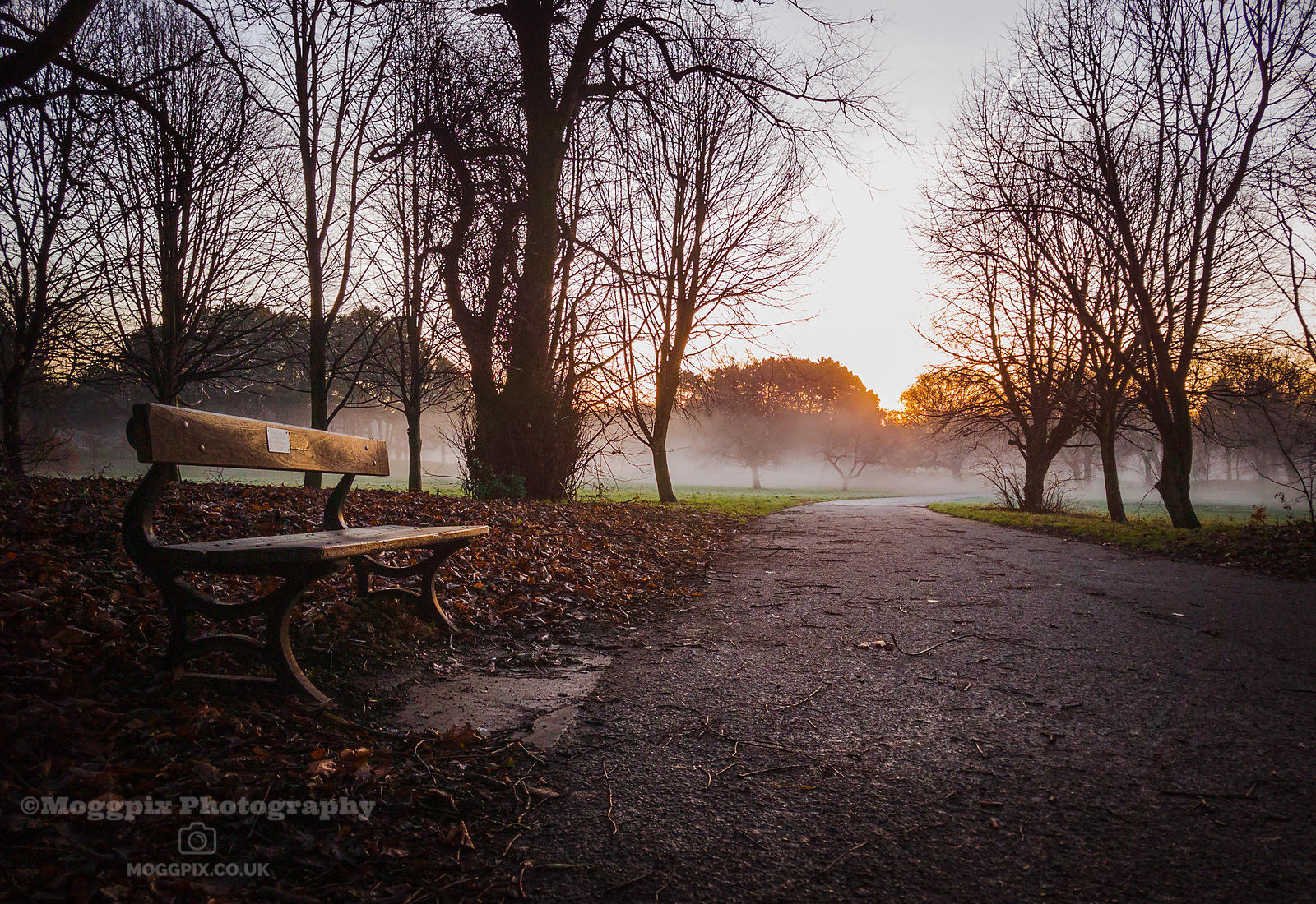 A Misty Morning in Sefton Park