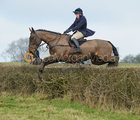 Meghan Healy jumping the hedge next to Knossington Spinney