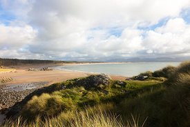 Newborough Warren