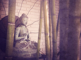 Buddha in the Sticks 2