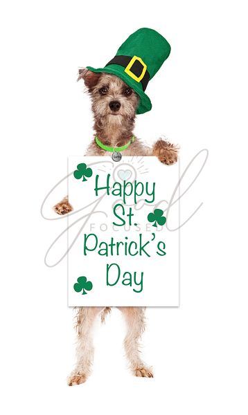 Terrier Dog Holding St Patricks Day Sign