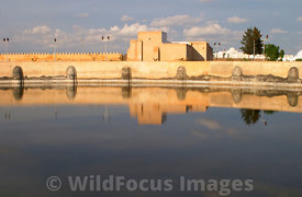 The very large main basin of the Aghlabid Basins. These cisterns were built in the 9th centruy to hold the towns water supply. In the middle of the largest (128m diameter) are the remains of a pavilion on which the rulers would come to relax on summer evenings. Kairouan, Tunisia; Landscape