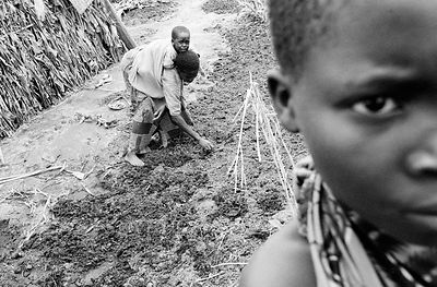 Burundi - Buhonga - Hutu peasant family cultivates a small patch of land within their regroupment camp.