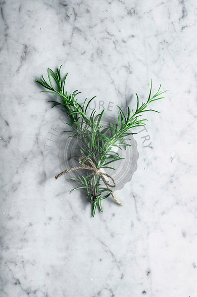 Rosemary bunch tied with twine on marble background