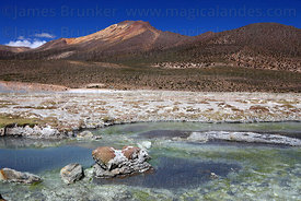 Warm stream with algae below hot springs at Polloquere and Cerro Capitan peak , Salar de Surire , Region XV , Chile