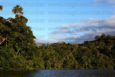 Madidi National Park photographs