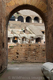 Inside the Colosseum, Italy; Portrait