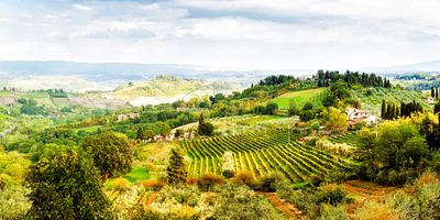 Panorama Rolling Hill Countryside in Tuscany Italy