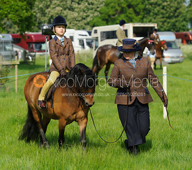 Class 16 - Baston South Lincs Show 2016