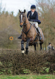 Fiona Gibson jumping a hedge from the meet