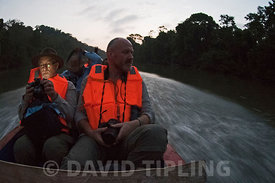 Heading deep into the Darién National Park along the Chucunaque River at dawn in search of the Harpy Eagle, Panama