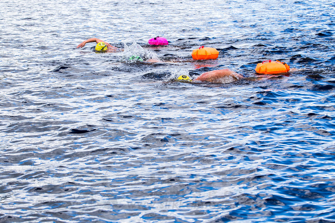 Open Water Swimming in Päijänne National Park