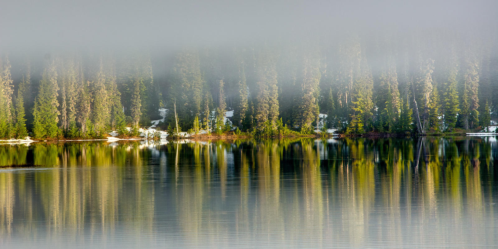 Reflection Lake Fog